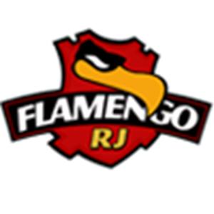 Brasileirão Flamengo RJ